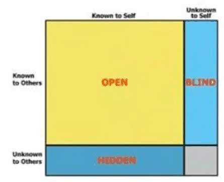 Completed Johari Window